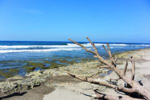 San Juan La Union Reef Break