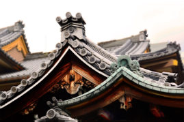 Temple Roof - Japan