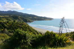 Beach Break near Raglan, New Zealand - Layback Travel