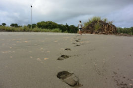 Footprints in the Sand, Panama - Layback Travel