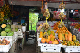 Fruits - Aceh, Sumatra - Layback Travel