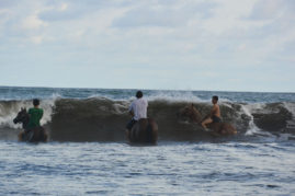 Horses are riding the waves in Guanico
