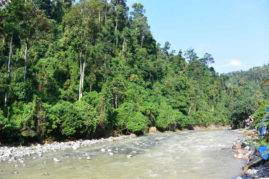 Bukit Lawang River, Sumatra - Layback Travel