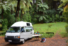 Lucys Gully Nationalpark, New Zealand - Layback Travel