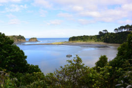 Mokau, New Zealand - Layback Travel