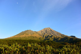 Mount Egmont National Parc, New Zealand - Layback Travel
