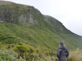 Mount Egmont - Taranaki, New Zealand - Layback Travel