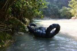 Jungle tour bukit lawang river raft - Sumatra - Layback Travel