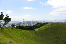 View of Auckland, New Zealand - Layback Travel