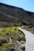 Boardwalks in Tongariro National Park - New Zealand