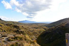 Landscape in Tongariro National Park
